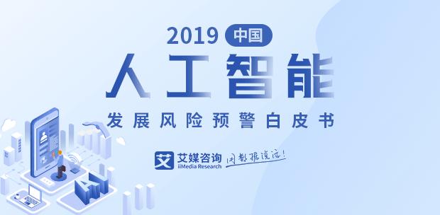 2019中国人工智能发展风险预警白皮书